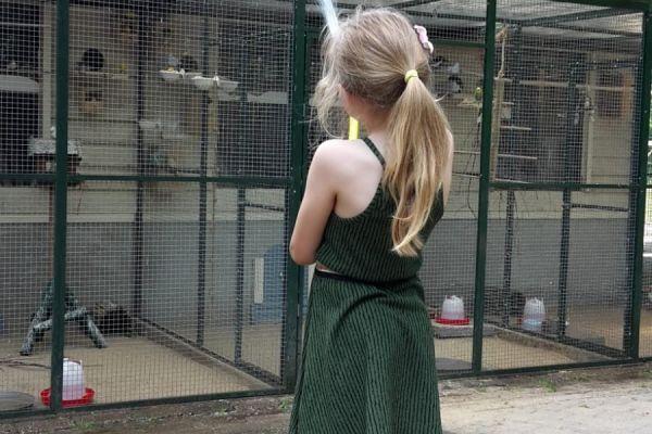 Zomer op de kinderboerderij in Gennep