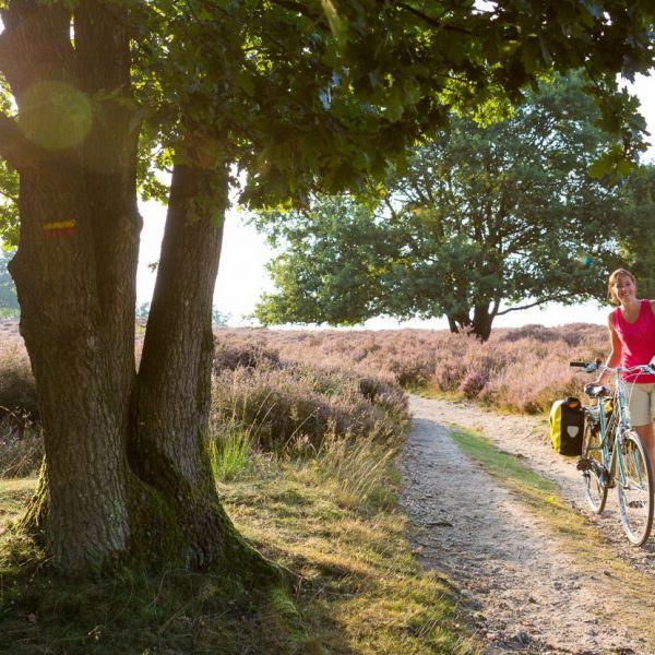 Grensoverschrijdend fietsen en wandelen?