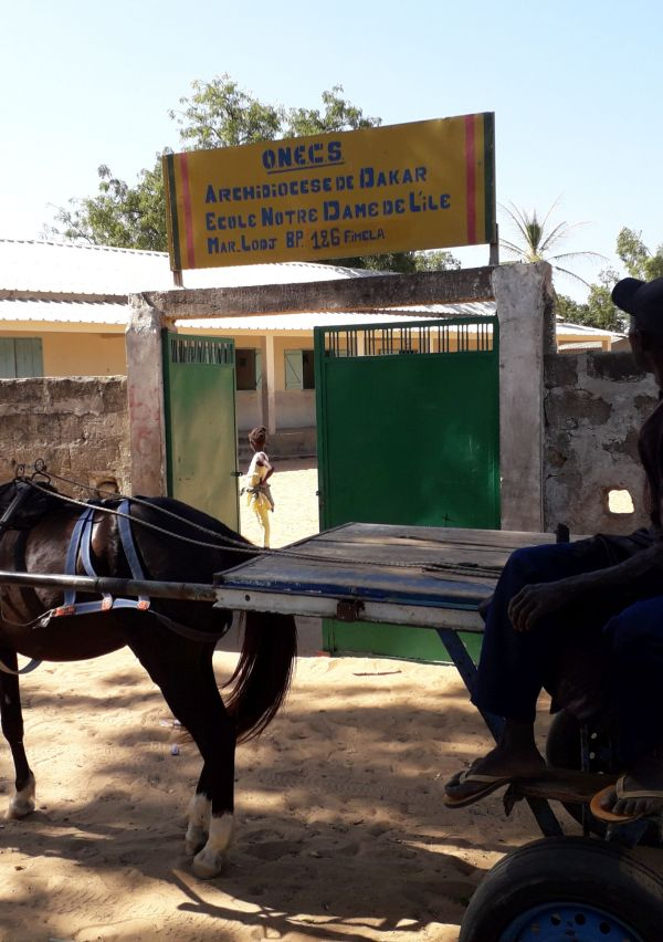 Stichting Support Yayème helpt nog steeds in Senegal 1