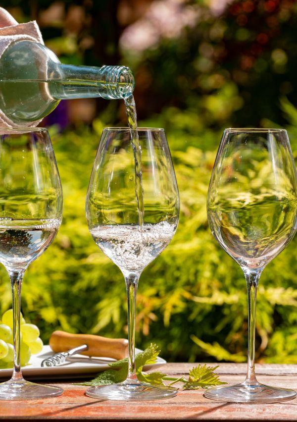Wijnhoeve de Heikant, vakantiegevoel om de hoek 7