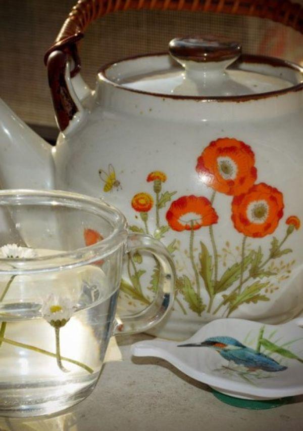 'Madeliefje, symbool van de lente' 1