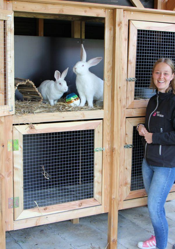 Uw konijn op vakantie in het konijnenhotel!