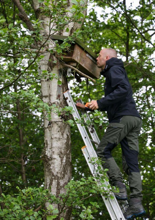 Roofvogel- en uilenwerkgroep IVN Maas & Niers 5